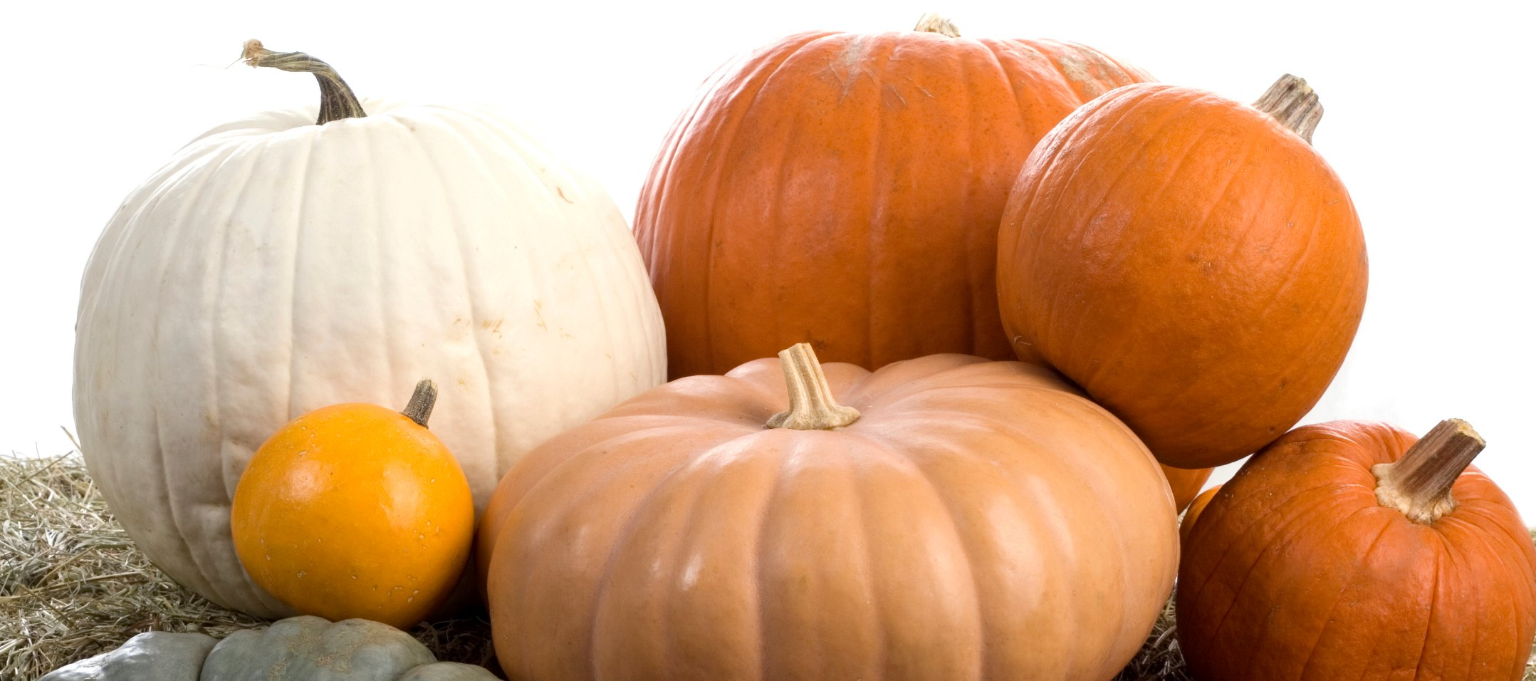 13 pumpkin decorating ideas for your small business the 13 pumpkin decorating ideas for your small business the creatively strategic world of sara summers